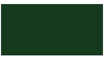 Dyma Stampi Logo